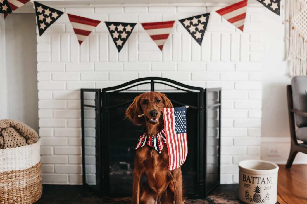 Independence Day, A celebration of Americas Spirit